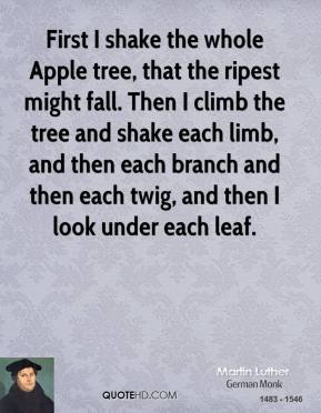 First I shake the whole Apple tree, that the ripest might fall. Then I climb the tree and shake each limb, and then each branch and then each twig, and then I look under each leaf.