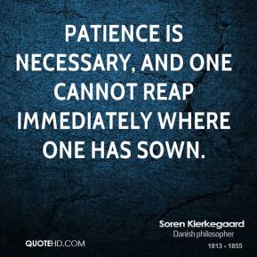 Soren Kierkegaard - Patience is necessary, and one cannot reap immediately where one has sown.
