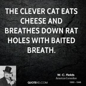 The clever cat eats cheese and breathes down rat holes with baited breath.