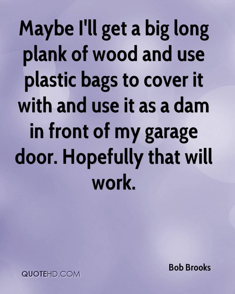 Maybe I'll get a big long plank of wood and use plastic bags to cover it with and use it as a dam in front of my garage door. Hopefully that will work.