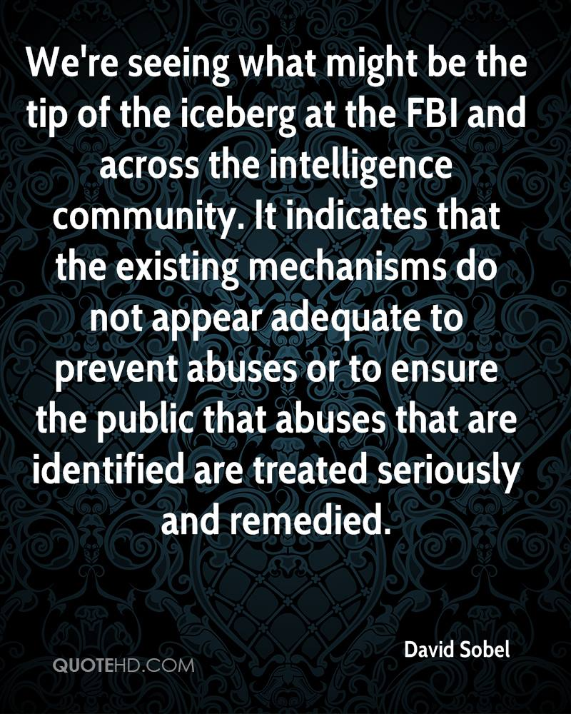 We're seeing what might be the tip of the iceberg at the FBI and across the intelligence community. It indicates that the existing mechanisms do not appear adequate to prevent abuses or to ensure the public that abuses that are identified are treated seriously and remedied.
