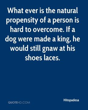 Hitopadesa - What ever is the natural propensity of a person is hard to overcome. If a dog were made a king, he would still gnaw at his shoes laces.