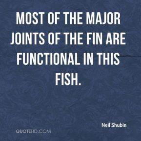 Most of the major joints of the fin are functional in this fish.