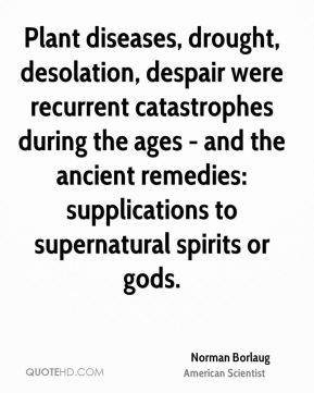 Norman Borlaug - Plant diseases, drought, desolation, despair were recurrent catastrophes during the ages - and the ancient remedies: supplications to supernatural spirits or gods.