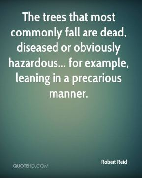 Robert Reid  - The trees that most commonly fall are dead, diseased or obviously hazardous... for example, leaning in a precarious manner.