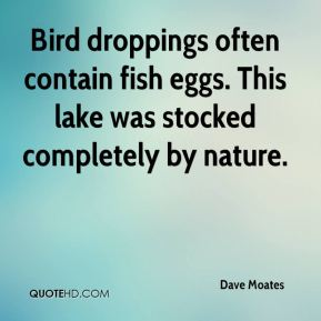 Dave Moates - Bird droppings often contain fish eggs. This lake was stocked completely by nature.