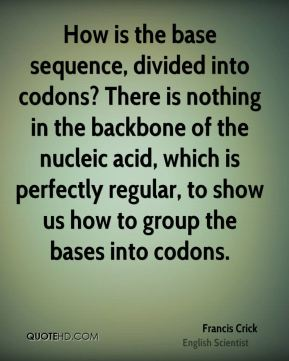 Francis Crick - How is the base sequence, divided into codons? There is nothing in the backbone of the nucleic acid, which is perfectly regular, to show us how to group the bases into codons.