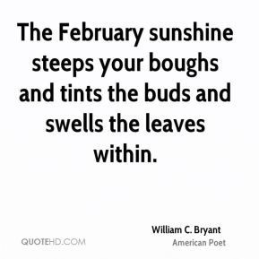 William C. Bryant - The February sunshine steeps your boughs and tints the buds and swells the leaves within.