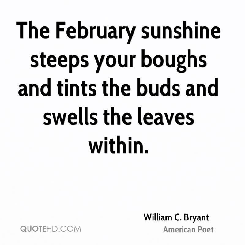 The February sunshine steeps your boughs and tints the buds and swells the leaves within.