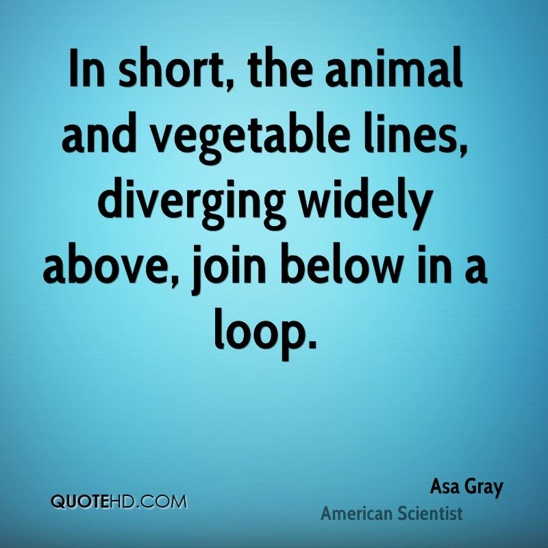 In short, the animal and vegetable lines, diverging widely above, join below in a loop.