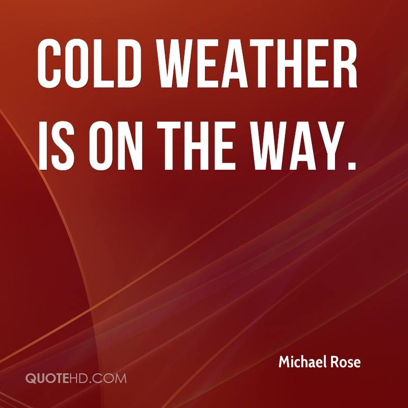 Michael Rose Quotes | QuoteHD