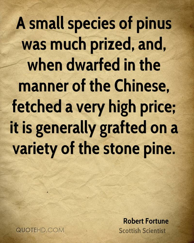A small species of pinus was much prized, and, when dwarfed in the manner of the Chinese, fetched a very high price; it is generally grafted on a variety of the stone pine.
