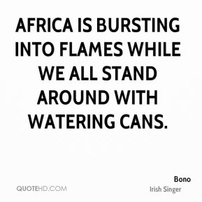 Africa is bursting into flames while we all stand around with watering cans.