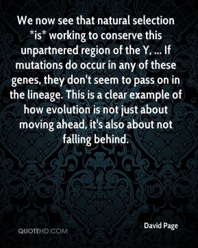 David Page - We now see that natural selection *is* working to conserve this unpartnered region of the Y, ... If mutations do occur in any of these genes, they don't seem to pass on in the lineage. This is a clear example of how evolution is not just about moving ahead, it's also about not falling behind.