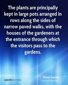 The plants are principally kept in large pots arranged in rows along the sides of narrow paved walks, with the houses of the gardeners at the entrance through which the visitors pass to the gardens.