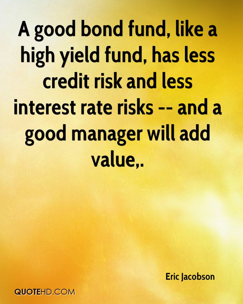 A good bond fund, like a high yield fund, has less credit risk and less interest rate risks -- and a good manager will add value.