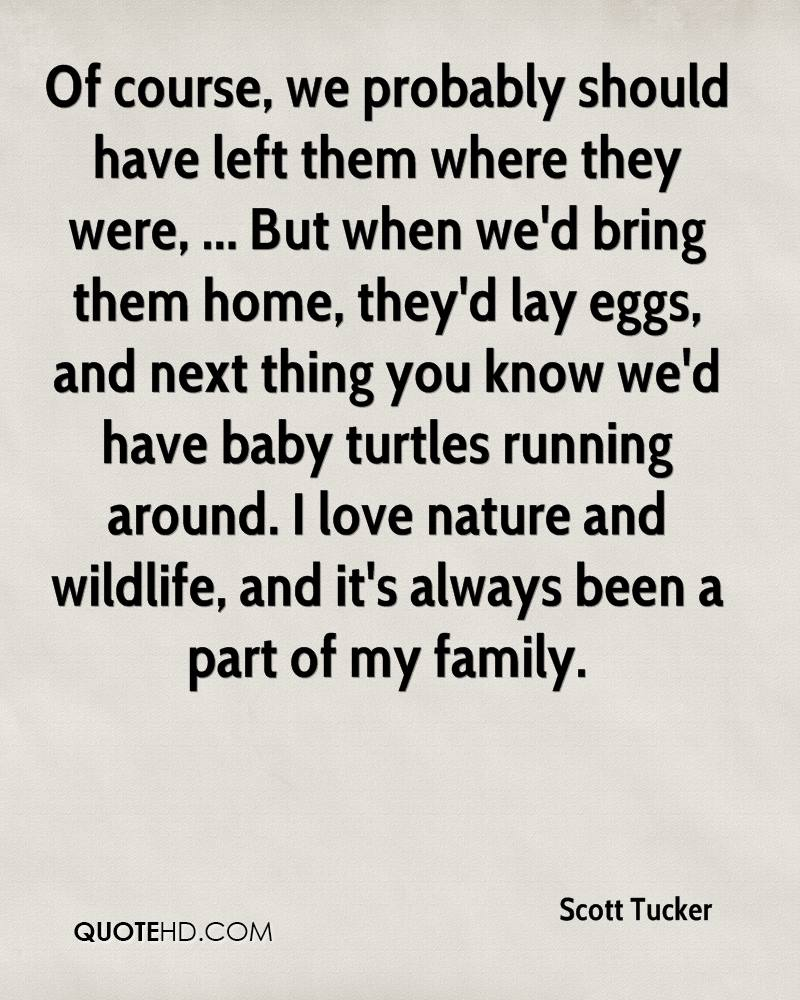 Of course, we probably should have left them where they were, ... But when we'd bring them home, they'd lay eggs, and next thing you know we'd have baby turtles running around. I love nature and wildlife, and it's always been a part of my family.