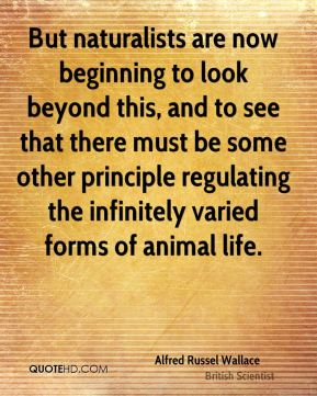 But naturalists are now beginning to look beyond this, and to see that there must be some other principle regulating the infinitely varied forms of animal life.