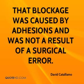 That blockage was caused by adhesions and was not a result of a surgical error.