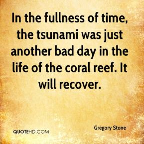 Gregory Stone - In the fullness of time, the tsunami was just another bad day in the life of the coral reef. It will recover.