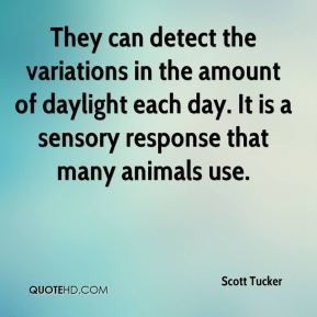 They can detect the variations in the amount of daylight each day. It is a sensory response that many animals use.