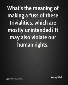 Wang Wei  - What's the meaning of making a fuss of these trivialities, which are mostly unintended? It may also violate our human rights.