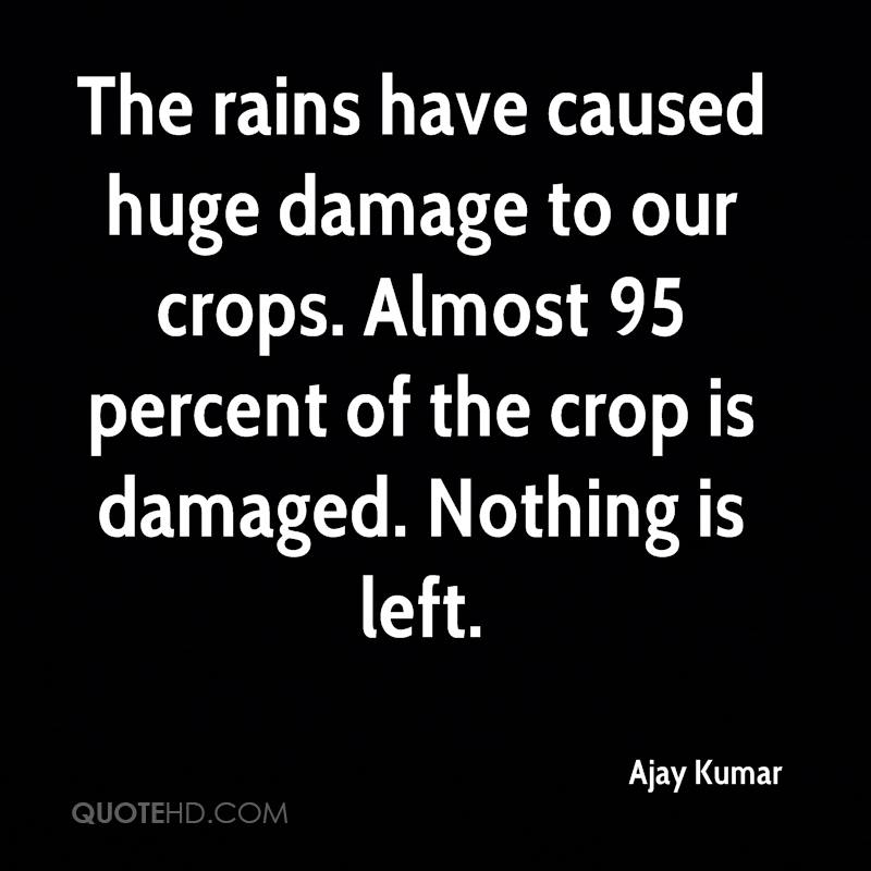 The rains have caused huge damage to our crops. Almost 95 percent of the crop is damaged. Nothing is left.