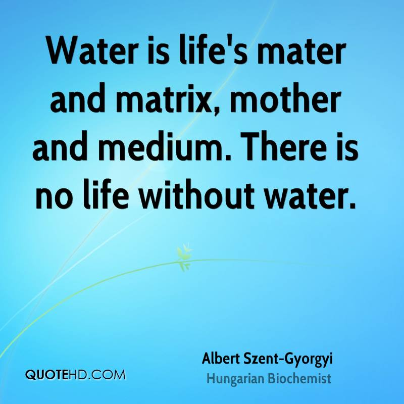 Water Is Life Quote Classy Mater Quotes  Page 1  Quotehd