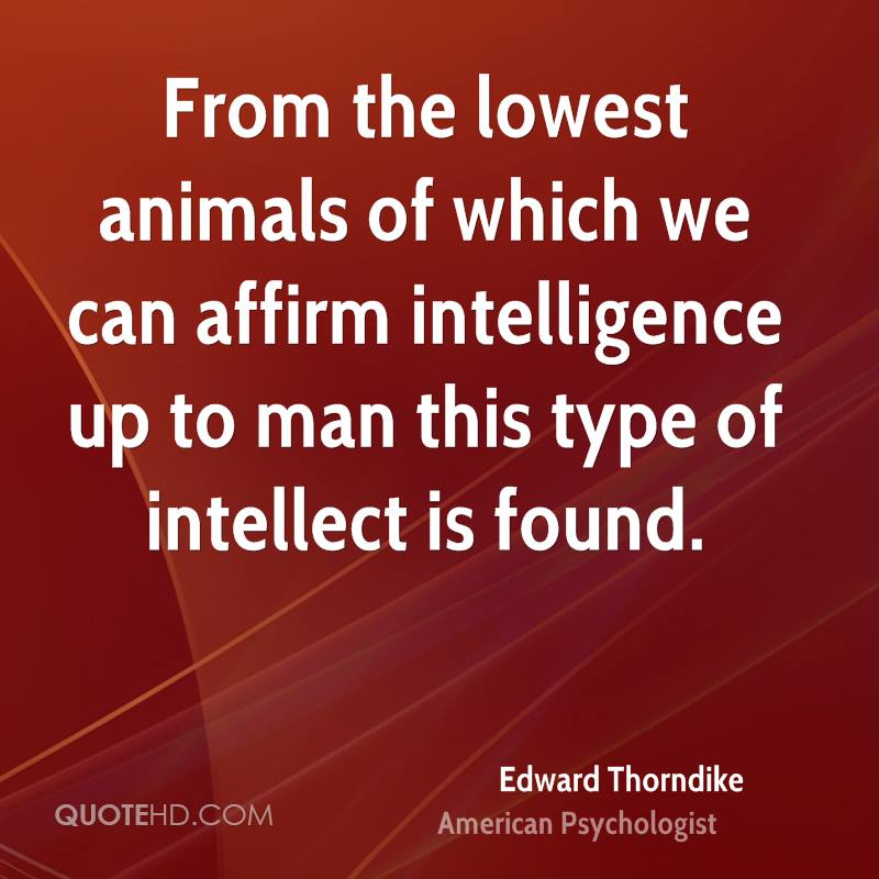 From the lowest animals of which we can affirm intelligence up to man this type of intellect is found.