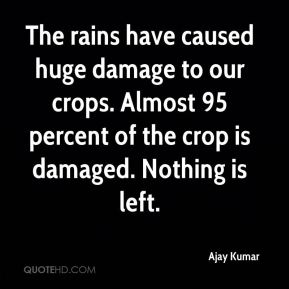 Ajay Kumar - The rains have caused huge damage to our crops. Almost 95 percent of the crop is damaged. Nothing is left.