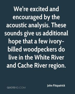 John Fitzpatrick  - We're excited and encouraged by the acoustic analysis. These sounds give us additional hope that a few ivory-billed woodpeckers do live in the White River and Cache River region.
