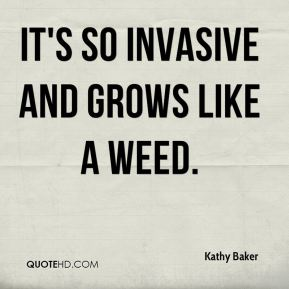 Kathy Baker  - It's so invasive and grows like a weed.
