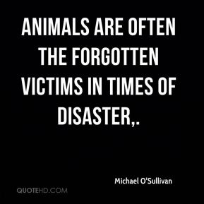 Animals are often the forgotten victims in times of disaster.