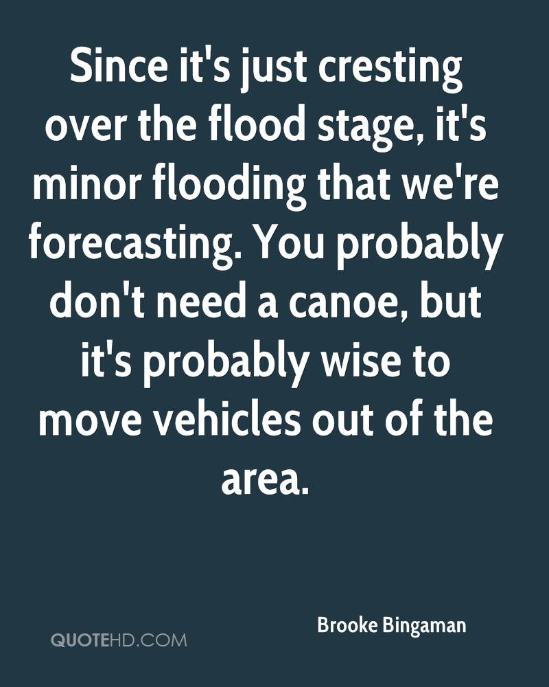 Since it's just cresting over the flood stage, it's minor flooding that we're forecasting. You probably don't need a canoe, but it's probably wise to move vehicles out of the area.