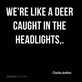 Charles Jenkins - We're like a deer caught in the headlights.