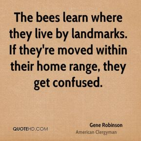 The bees learn where they live by landmarks. If they're moved within their home range, they get confused.