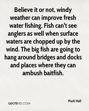 Mark Hall  - Believe it or not, windy weather can improve fresh water fishing. Fish can't see anglers as well when surface waters are chopped up by the wind. The big fish are going to hang around bridges and docks and places where they can ambush baitfish.