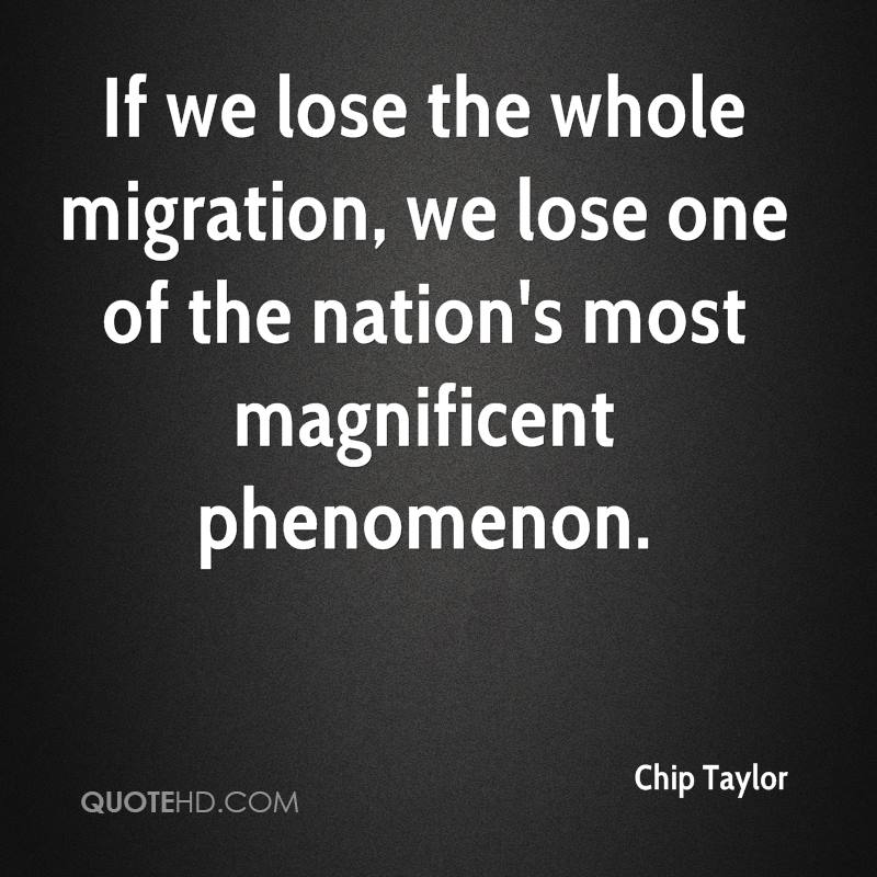 If we lose the whole migration, we lose one of the nation's most magnificent phenomenon.