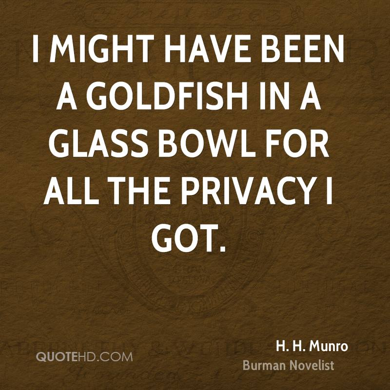 I might have been a goldfish in a glass bowl for all the privacy I got.