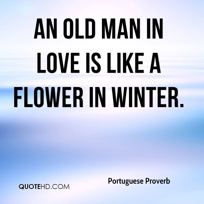 Portuguese Proverb Quotes Quotehd