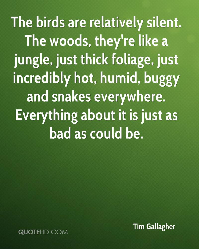 The birds are relatively silent. The woods, they're like a jungle, just thick foliage, just incredibly hot, humid, buggy and snakes everywhere. Everything about it is just as bad as could be.