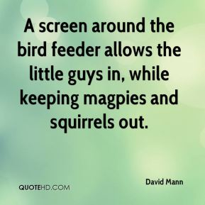 David Mann - A screen around the bird feeder allows the little guys in, while keeping magpies and squirrels out.