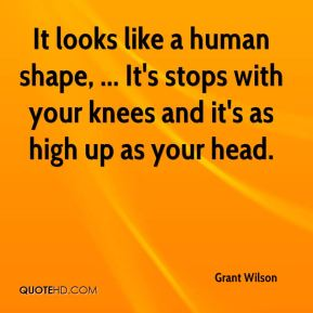 Grant Wilson - It looks like a human shape, ... It's stops with your knees and it's as high up as your head.