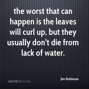 the worst that can happen is the leaves will curl up, but they usually don't die from lack of water.