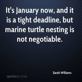 It's January now, and it is a tight deadline, but marine turtle nesting is not negotiable.