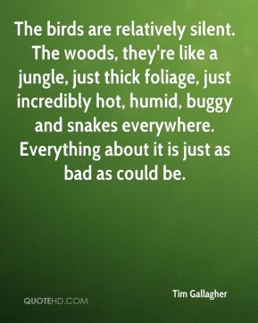 Tim Gallagher  - The birds are relatively silent. The woods, they're like a jungle, just thick foliage, just incredibly hot, humid, buggy and snakes everywhere. Everything about it is just as bad as could be.