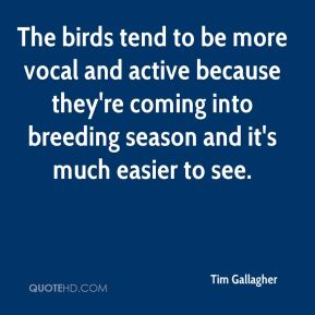 The birds tend to be more vocal and active because they're coming into breeding season and it's much easier to see.