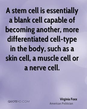 Virginia Foxx - A stem cell is essentially a blank cell capable of becoming another, more differentiated cell-type in the body, such as a skin cell, a muscle cell or a nerve cell.