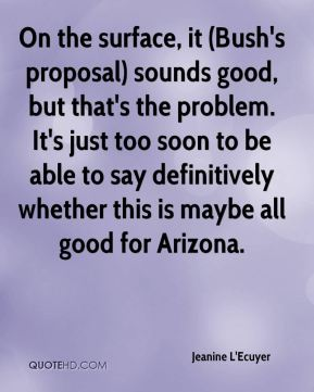 Jeanine L'Ecuyer  - On the surface, it (Bush's proposal) sounds good, but that's the problem. It's just too soon to be able to say definitively whether this is maybe all good for Arizona.