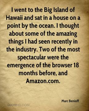 I went to the Big Island of Hawaii and sat in a house on a point by the ocean. I thought about some of the amazing things I had seen recently in the industry. Two of the most spectacular were the emergence of the browser 18 months before, and Amazon.com.